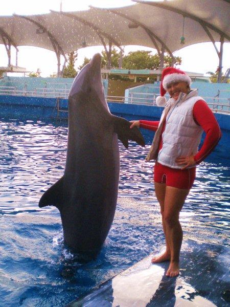 Santa-Dolphin