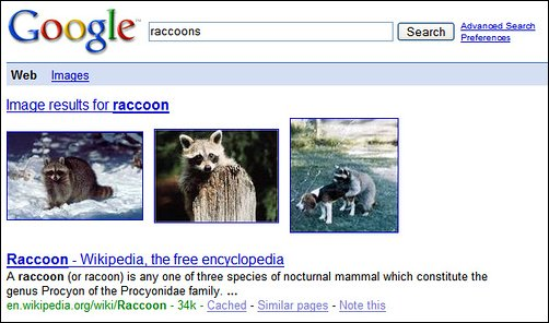 google-universal-search-raccoon